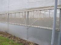 woven insect net for net and green house
