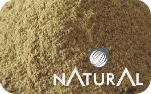 Dehydrated Coriander Powder