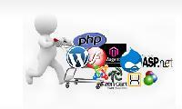 E-commerce Website Desigining