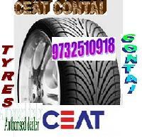 Ceat Automotive Tyre