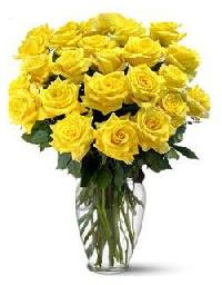 24 Yellow Rose Bouquet