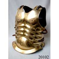 Muscle Armor Brass Finish