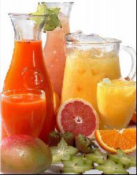 Fruit Juice Plant