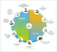 Human Resource Management System Software
