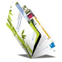 Brochure Designing & Printing