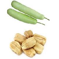 Bottle Gourd Seeds