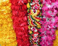 Flower Garlands