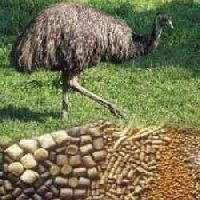 Emu Bird Feed