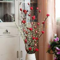 Home Decorative Dries Flower