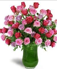 Infinite Love Roses