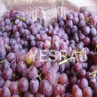 Fresh Muscat Grapes