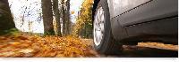 Tyre Marketing & Distribution