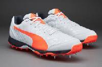 Puma Evo Speed Cricket Shoes