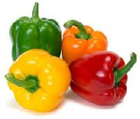 Green Capsicum Yellow Capsicum
