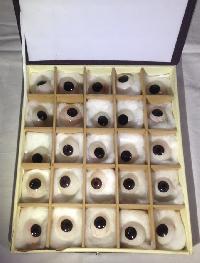 Black Artificial Eye