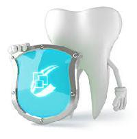 Dental Education Software