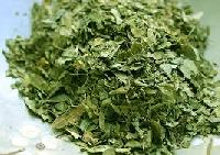 Moringa (surjana) Dried Leaves, Powder And Extract