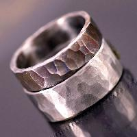 Forged Steel Rings