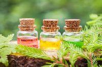 Meditation Massage Oil