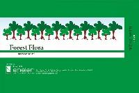Forest Flora Incense Sticks