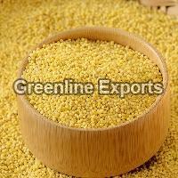 Little Millet Seeds