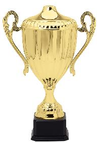Gold Plated Trophy Cup