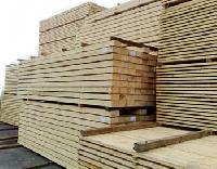 Timber TB-01