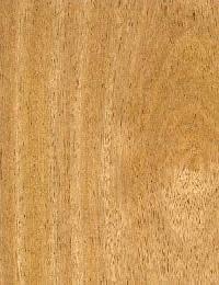 Wood Veneer DV-01