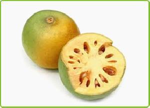 Fresh Bael Fruit