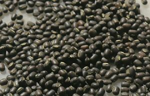 Gunwanti Black Whole Urad Dal