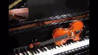 Harmonium Violin Fingerboard