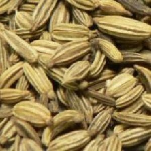 Fennel Seed Extract