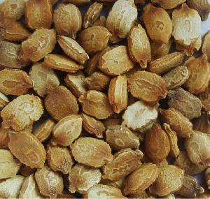 Dehydrated Bitter Gourd Seeds