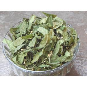Dehydrated Neem Leaves