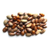 Akara Herbal Seeds