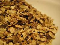 Angelica Herbal Seeds