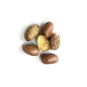 Monodora Herbal Seeds