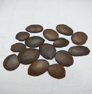Renlive Herbal Seeds