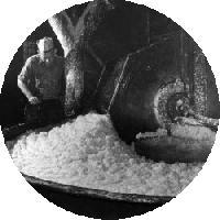 Cationic Starch Powder