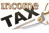 Income Tax Consultants