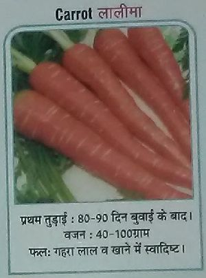 Lalima Fresh Carrot