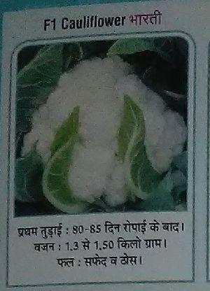 F1 Bharti Fresh Cauliflower