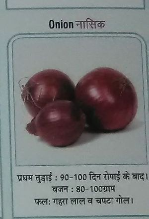 Nasik Fresh Onion