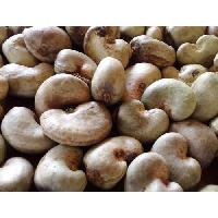 Raw Cashew Nuts (RCN)