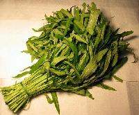 water spinach