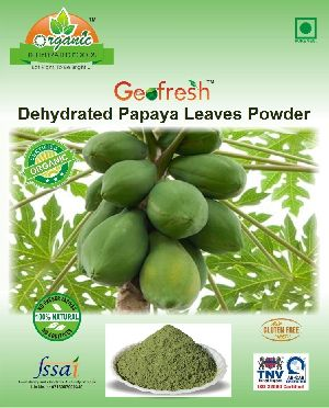 Dehydrated Papaya Leaves Powder