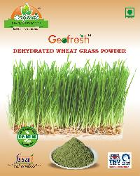 Dehydrated Wheat Grass Powder