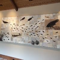 Sandstone Fossils