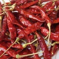 Dry Red Chilli 344