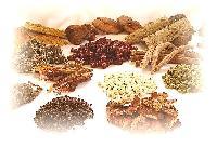 Crude Herbal Drug